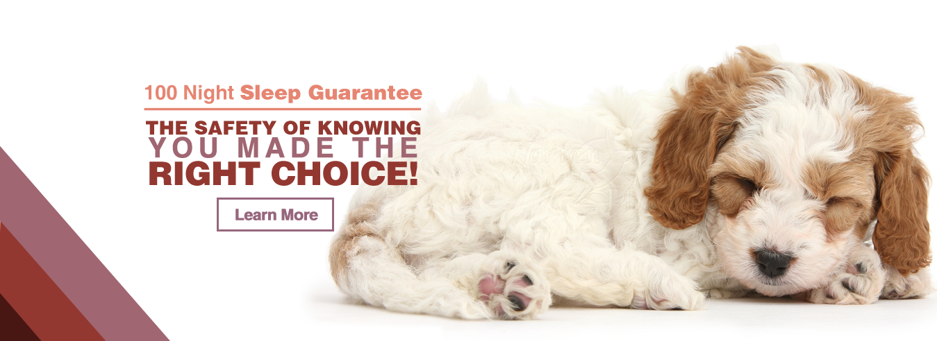 100-Night-Sleep-Guarantee-Banner